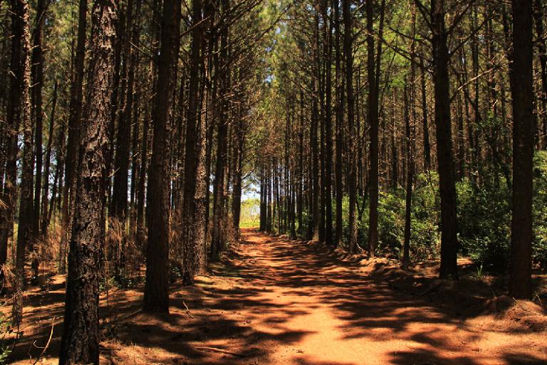 Parque Provincial Crovetto